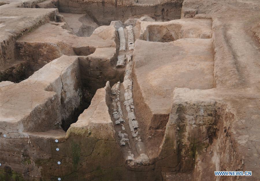 中國-河南-淮陽-考古學(CN)
