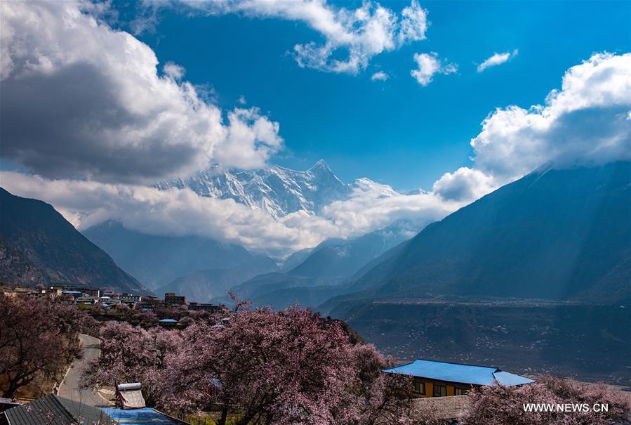 CHINA-TIBET-YARLUNG ZANGBO RIVER-SPRING-SCENERY (CN)