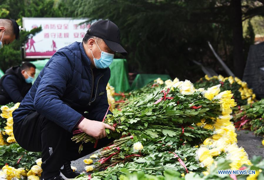 CHINA-JINAN-TOMB-SWEEPING-SERVICE (CN)