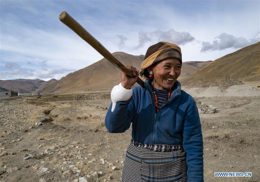 CHINA-TIBET-TINGRI-FARMING (CN)
