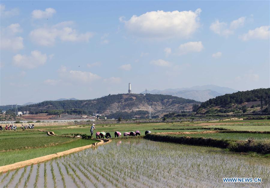 中国-云南-寻甸(CN)