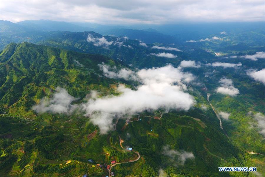 CHINA-GUANGXI-RONGSHUI-TERRACED FIELD(CN)