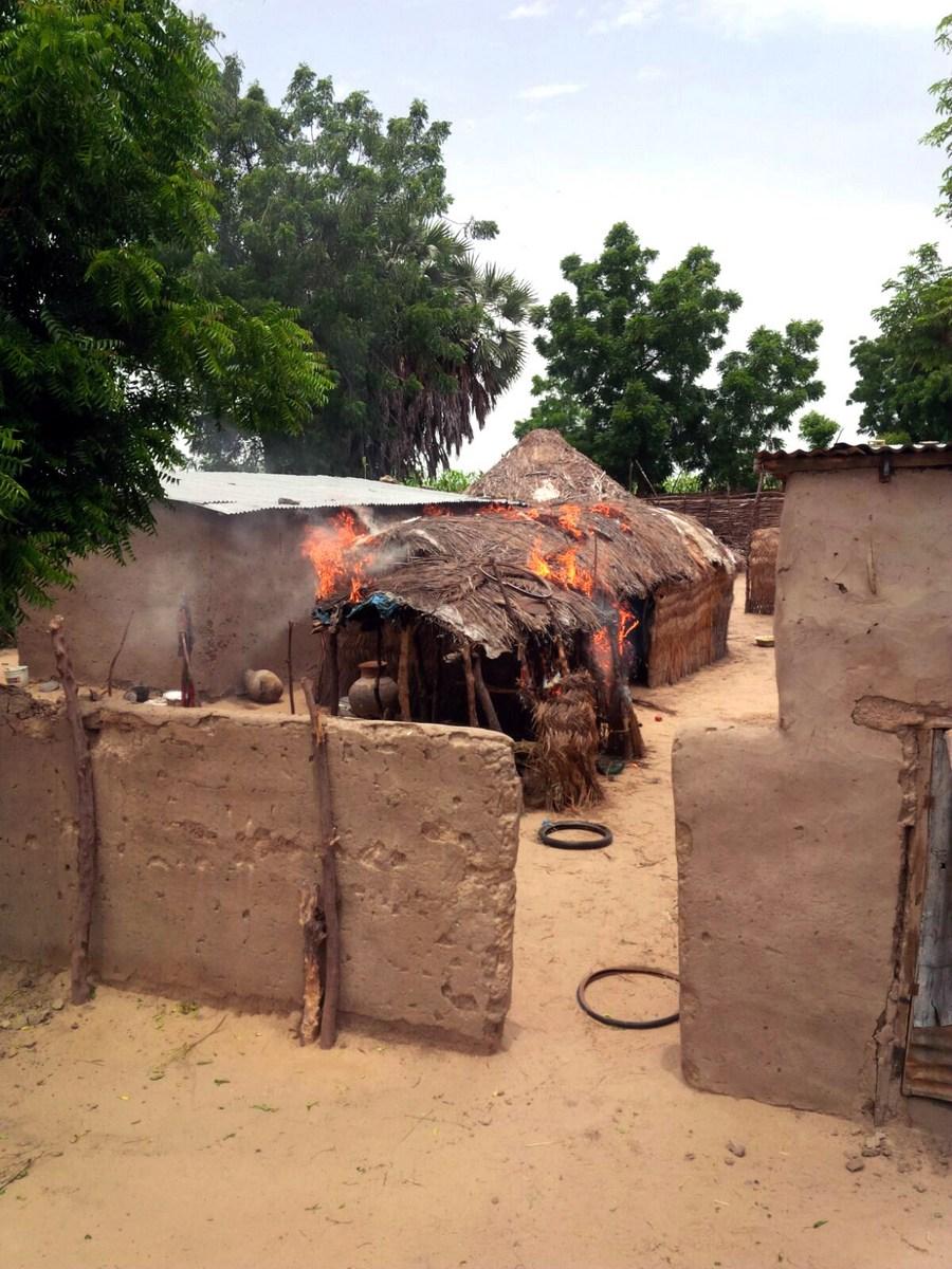 17 Boko Haram militants killed following ambush on Nigerian troops - Xinhua   English.news.cn