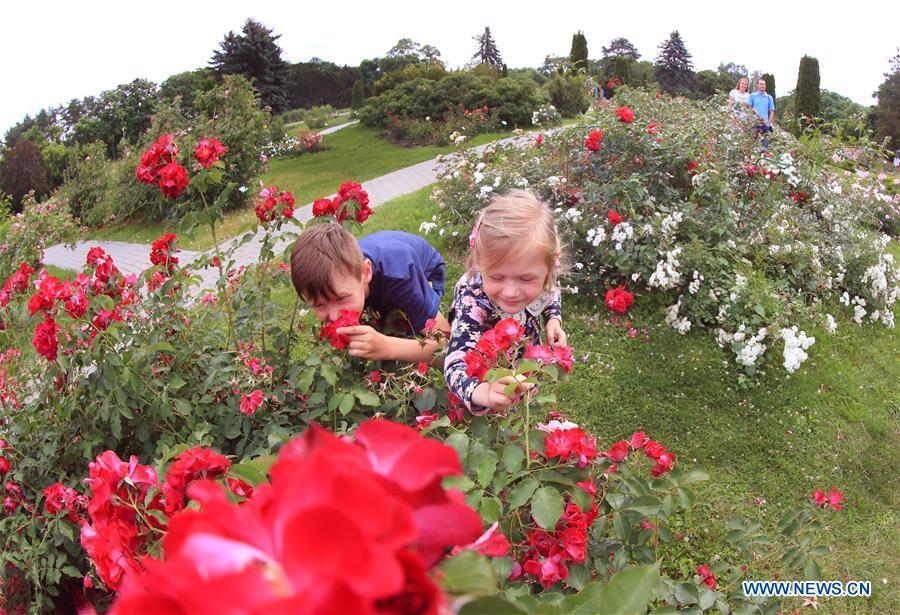 BELARUS-MINSK-FLOWERS