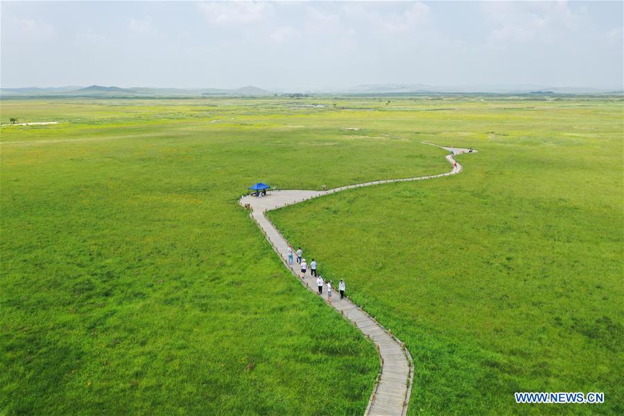 CHINA-INNER MONGOLIA-XILINGOL LEAGUE-PASTURE (CN)