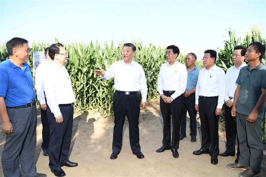 CHINA-JILIN-XI JINPING-INSPECTION (CN)