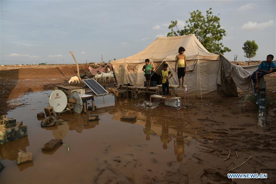 也门-哈贾哈-洪水
