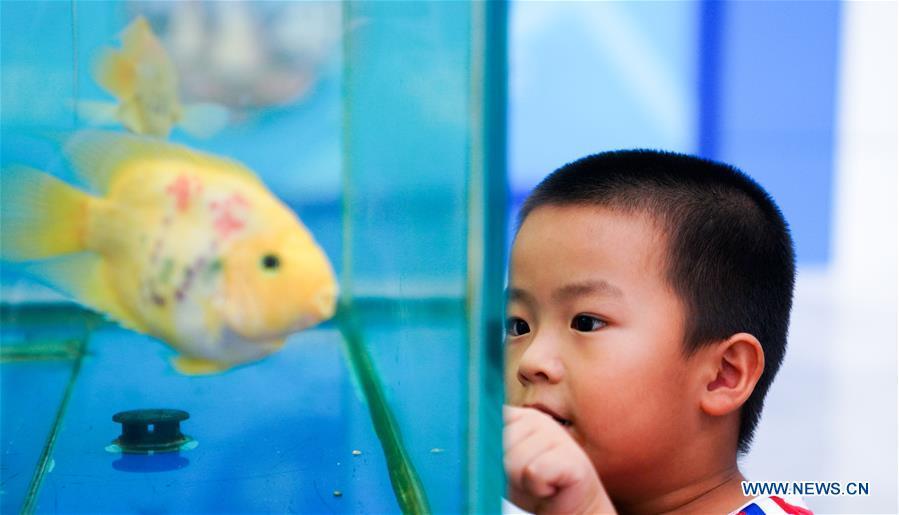 CHINA-JILIN-CHANGCHUN-AGRICULTURE AND FOOD EXPO-AQUATICS (CN)
