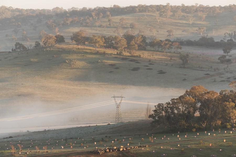 Morning fog in Australia's Canberra - Xinhua | English.news.cn