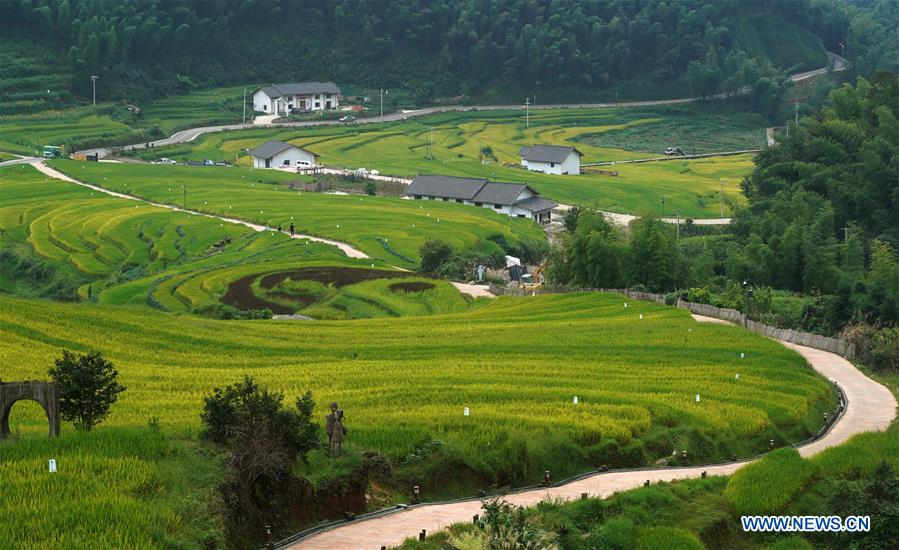 CHINA-JIANGXI-TERRACED FIELDS-SCENERY (CN)