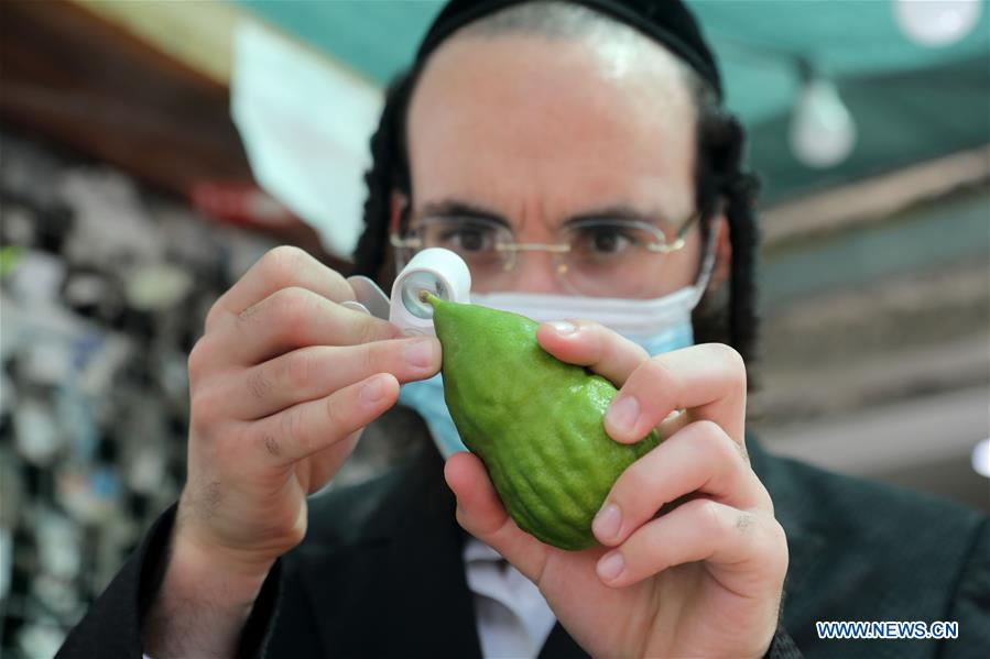 ISRAEL-BNEI BRAK-SUKKOT-PREPARATION