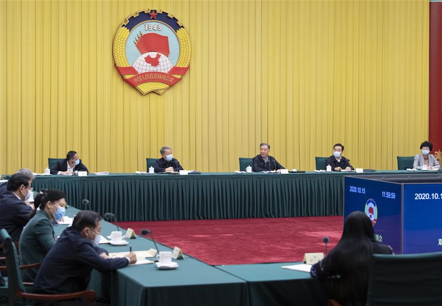 CHINA-BEIJING-WANG YANG-CPPCC-BIWEEKLY SEMINAR (CN)