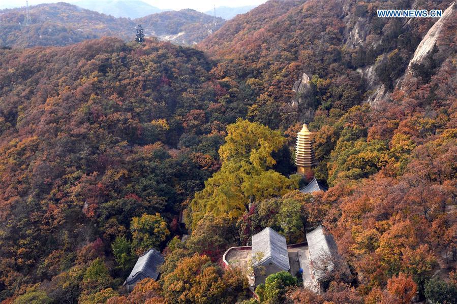 CHINA-TIANJIN-PANSHAN-AUTUMN-SCENERY (CN)