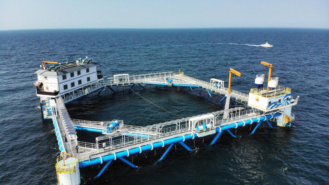 Xinhua Headlines: China promotes sustainable, ecological marine farming with technology - Xinhua | English.news.cn