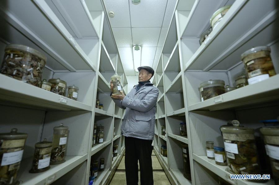 Elder Couple Devoted to Herpetological Research for 60 Years