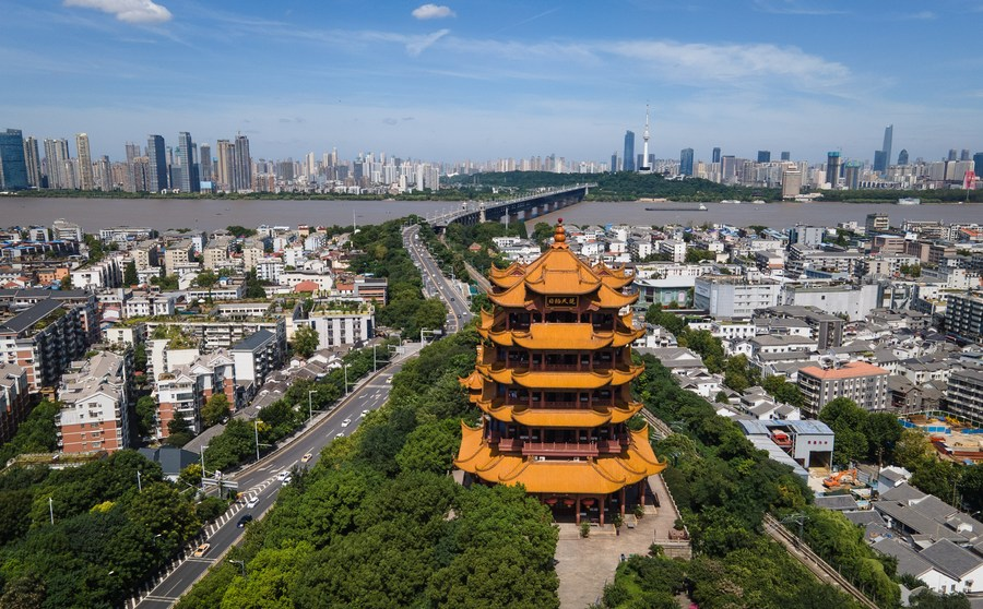 Huanan seafood market may not be site of earliest COVID-19 outbreak: WHO-China team