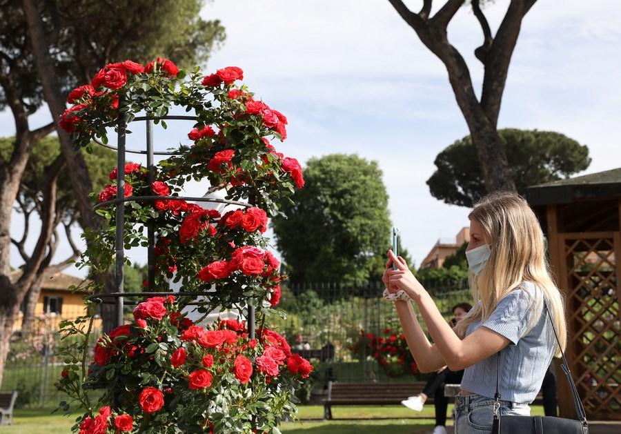"""Roundup: Italy launches coronavirus """"green pass""""  - Xinhua   English.news.cn"""