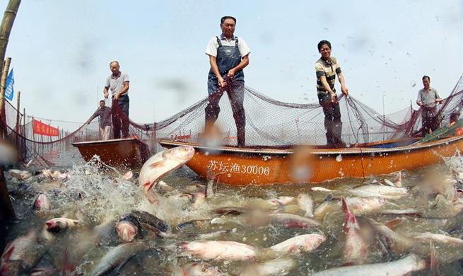Fishermen restart fishing on Changdang Lake after 20-month fishing ban