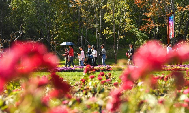 Citizens enjoy autumn scenery at ecological park in Changchun, NE China
