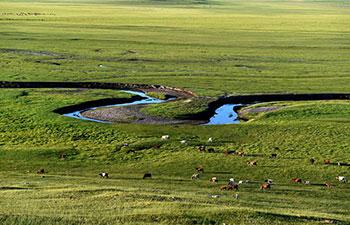Scenery of prairie in north China's Inner Mongolia