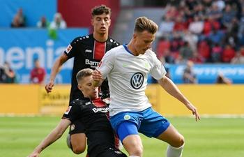 Hoffenheim, Wolfsburg win in German Bundesliga