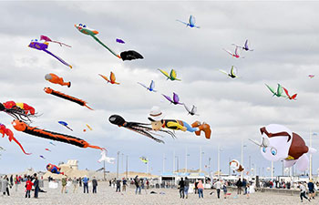 In pics: 20th Dieppe Int'l Kite Festival
