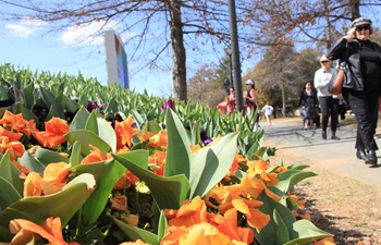 People visit Floriade in Canberra, Australia