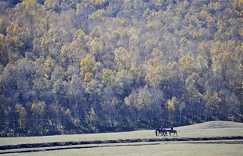 Autumn scenery in Chengde, N China's Hebei
