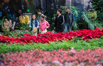 Flower-themed complex in Kunming attracts tourists