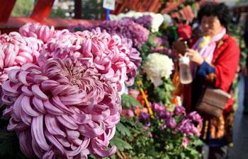 Tourists enjoy chrysanthemums at Millennium City Park in C China