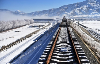 In pics: construction site on Lhasa-Nyingchi section of Sichuan-Tibet Railway in China's Tibet