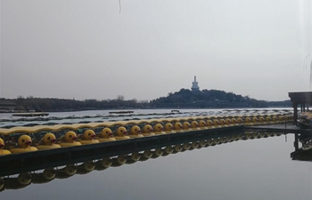 In pics: Beihai Park in Beijing