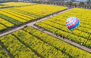 Cole flower tourism festival kicks off in Huzhou, east China's Zhejiang