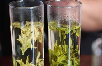 Zhejiang's Jiande dedicated to developing tea industry