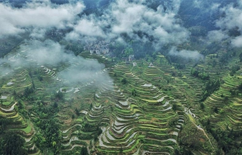Aerial view of Tang'an terraced fields in SW China's Guizhou