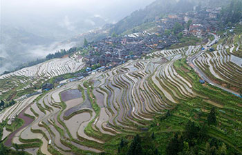 Aerial view of terraced fields in China's Guizhou