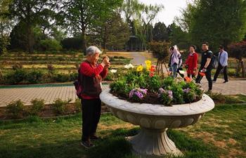 People enjoy spring scenery at Beijing Botanical Garden