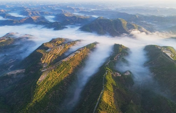 Wuqi county in Yan'an pursues ecological, sustainable development