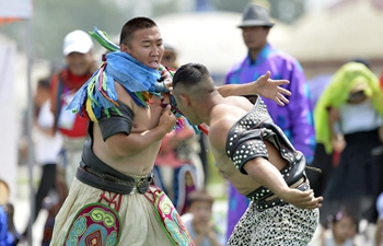 Mongolian wrestling competition held in Hohot, north China