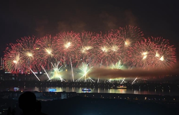 Fireworks illuminate sky to mark China-African Economic and Trade Expo