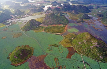Scenery at Puzhehei national wetland park in SW China's Yunnan