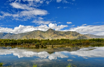 Scenery at Golden Pond Ecological Scenic Spot in China's Tibet