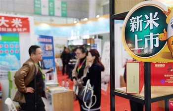 Int'l rice festival kicks off in Harbin