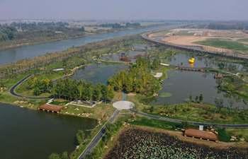 In pics: Fangwan Wetland Park in China's Jiangsu