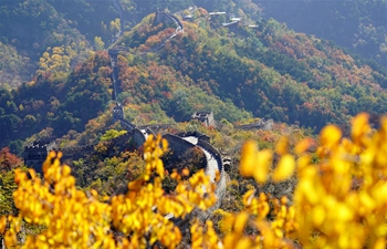 Autumn scenery at the Mutianyu Great Wall in Beijing