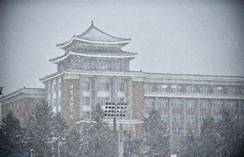Snowfall hits Changchun