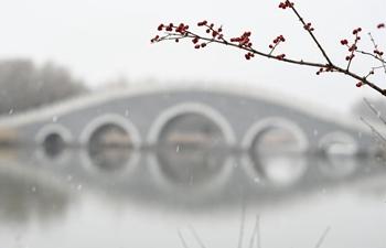 China's Yinchuan embraces first snowfall
