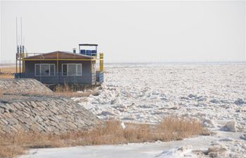 Major part of China's Yellow River frozen solid