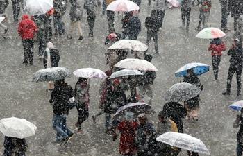 Snowfall hits capital of northern Indian state of Himachal Pradesh