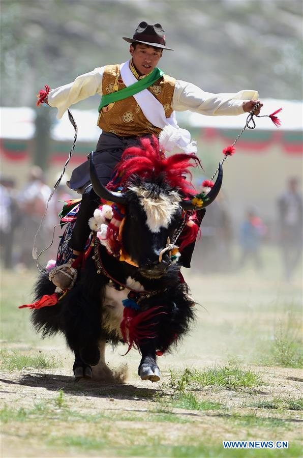 CHINA-TIBET-ONGKOR FESTIVAL-CELEBRATION (CN)